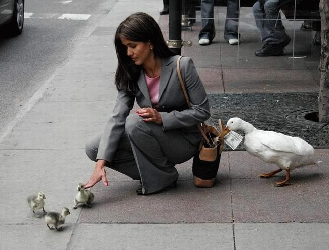 http://voyagesatlantis.ca/public/_images/Conseils/pickpocket.jpg